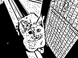 版画風ペルラ